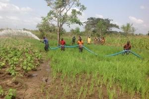 Matters Arising on Farmers Pastoralist Conflict in Nigeria